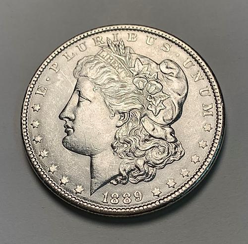 1889 Morgan Silver Dollar BU [MDL 171]
