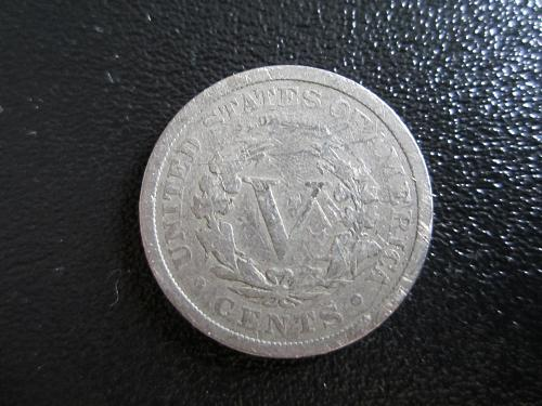 1893-P Liberty Nickel in plastic protector pouch for preservation