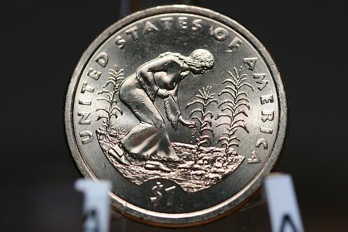 2009 D Sacagawea Native America Dollar BU UNC High MS U S Mint Rolls.