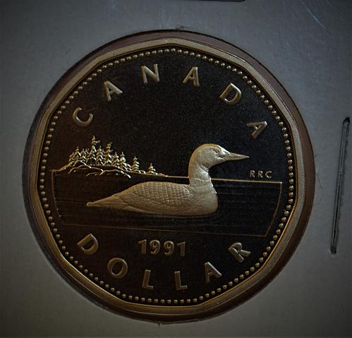 1991 Canada One Dollar Proof CAMEO - Loonie