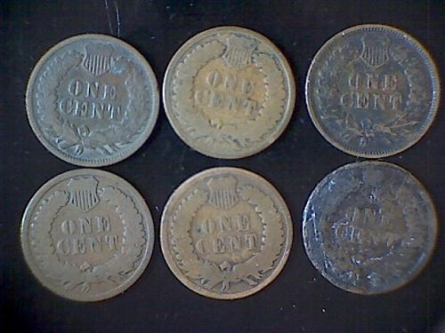 1880-1885 Indian Cent Lot