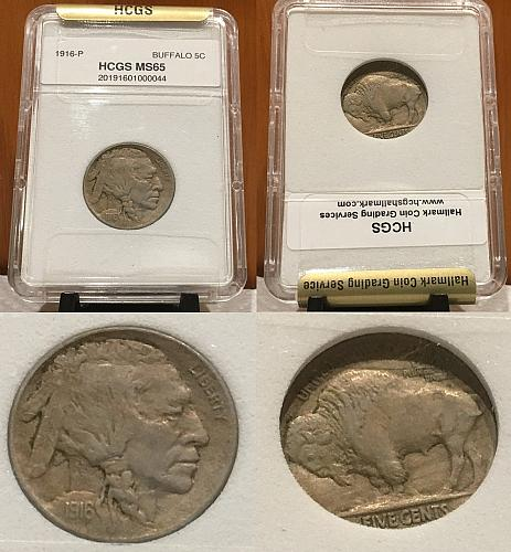 1916 5C HCGS MS65 Buffalo Nickel