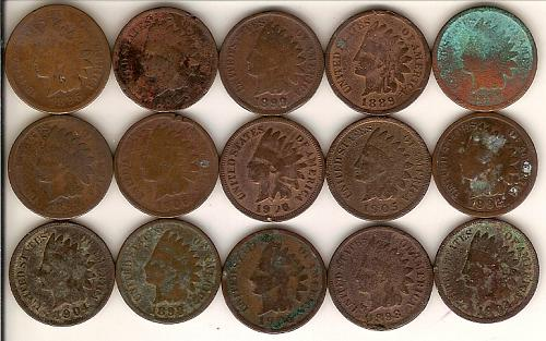 Collection of 15 Indian Head Pennies