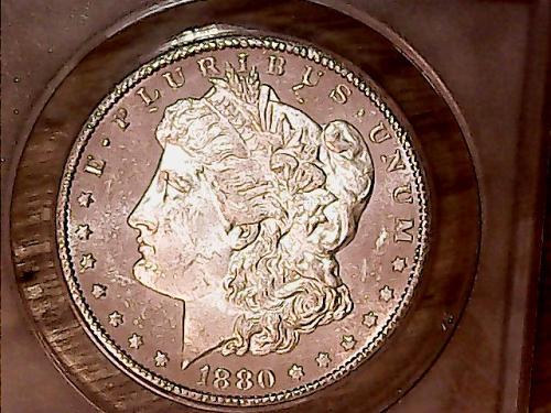 1880 S Morgan Dollars MS-63  OBV. DMPL STUNNER