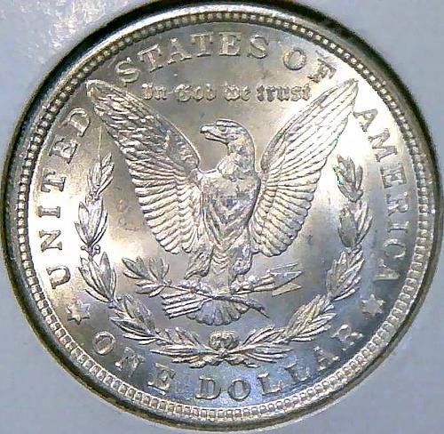 1921 Morgan Dollars Early Silver Dollars. V2P14R1