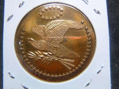 USA BICENTENNIAL FLYING EAGLE  WITH 52 STARS  BRONZE MEDAL COIN